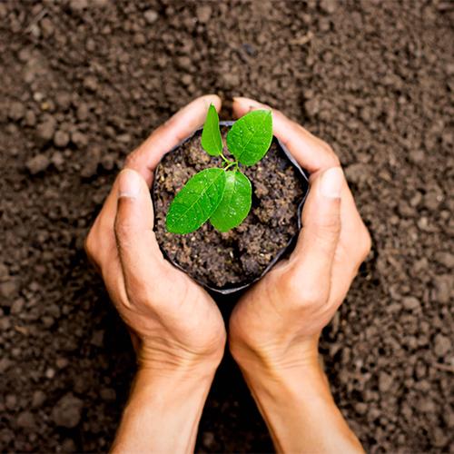 reduce-your-environmental-impact_500x